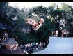 Lance Mountain in the tree above his own ramp in the early 80's